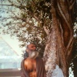 Swamiji Underneath a Tree